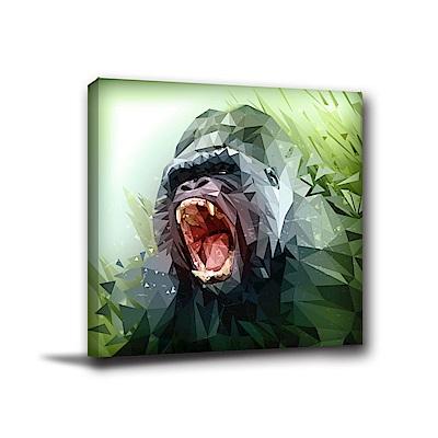 美學365-單聯式方形 掛畫無框畫 怒吼的猩猩-40x40cm