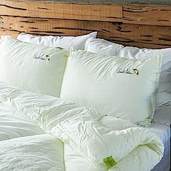 戀家小舖 / 枕頭  蠶絲蛋白天然抗菌枕-兩入組  蠶絲蛋白純棉表布  台灣製