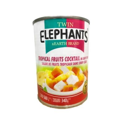雙象地球牌 糖水綜合水果(560g)