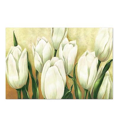 美學365 單聯 時尚無框畫掛畫-白色花卉 40x60cm