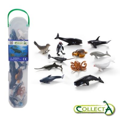 CollectA迷你海洋生物組2(盒裝-12入)~英國高擬真模型R1108