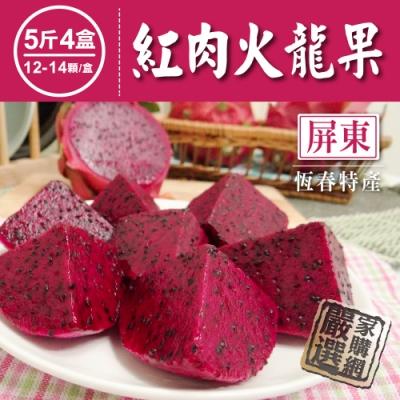 家購網嚴選 屏東紅肉火龍果 (小) 5斤x4盒 (12-14顆/盒)