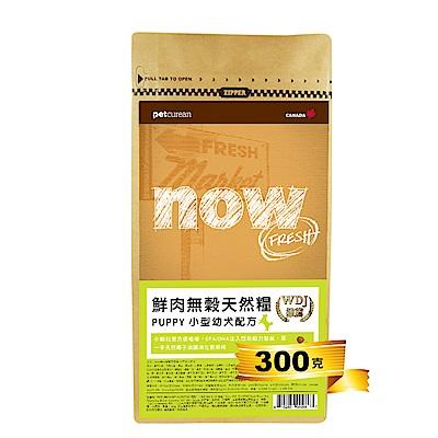 Now! 鮮肉無穀天然糧 小型幼犬配方-300克 三件組