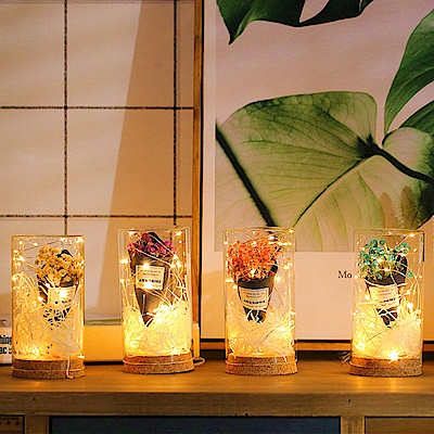 iSFun 浪漫乾燥花玻璃罐銅線燈(4色可選)