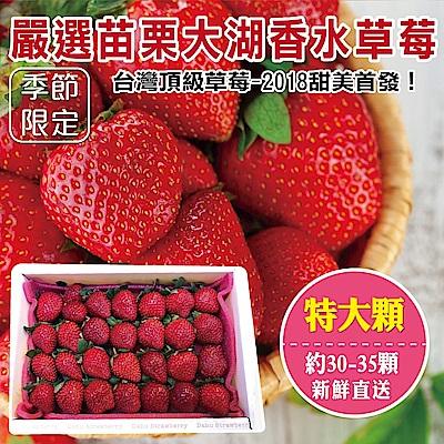 【天天果園】嚴選苗栗大湖香水草莓(30-35顆/共約400g) x1盒