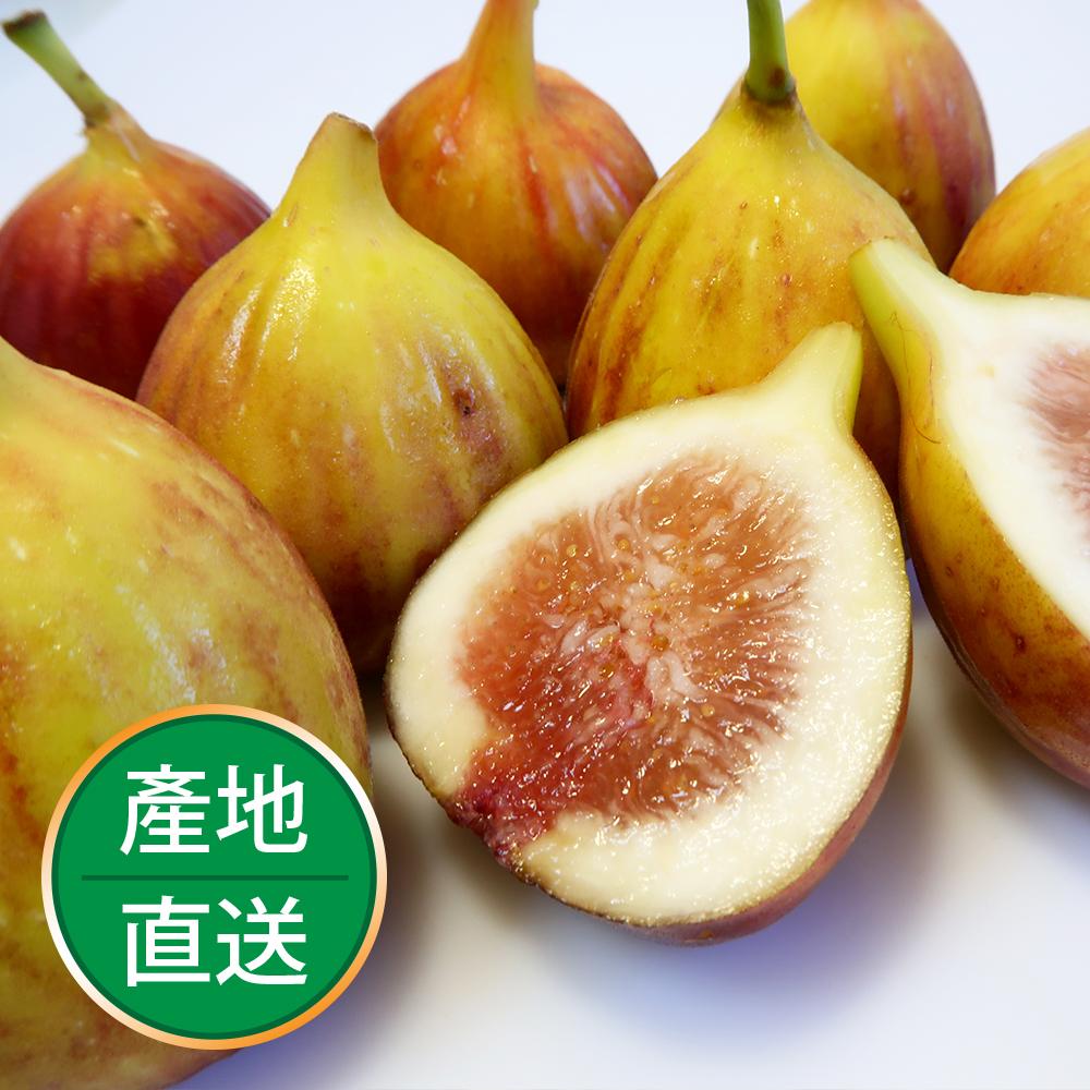 【果物配】新鮮無花果.有機轉型期(1斤/盒)