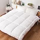 戀家小舖 / 雙人棉被  可水洗QQ被  冬被透氣不悶熱  台灣製