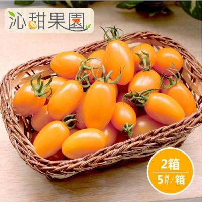 沁甜果園SSN‧橙蜜香小番茄5斤/盒,(共2盒)