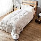 戀家小舖 / 單人棉被  天然水鳥羽絲絨被-兩色可選  輕盈透氣  蓄熱保暖  台灣製