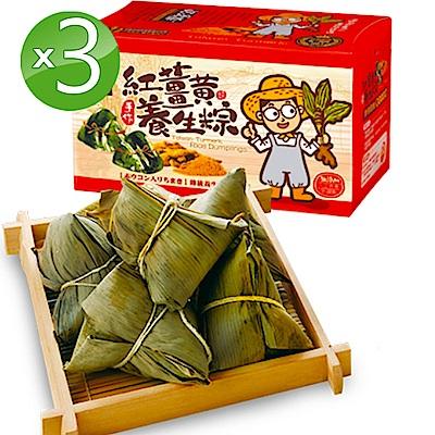 豐滿生技 紅薑黃素食養生粽3盒組(6入/盒;180g/顆)端午限定