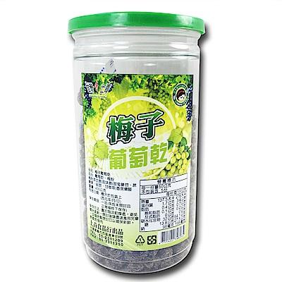 台灣上青 嚴選鮮採無籽無核水果乾-梅子葡萄乾(400g/罐)