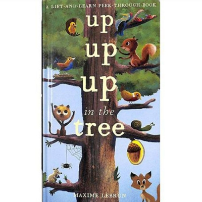 Up Up Up In The Tree A Lift-And-Learn Peek-Through Book 小松鼠覓食記翻翻書