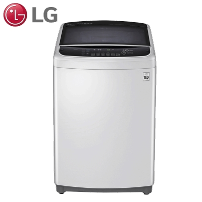LG樂金  16公斤直驅變頻洗衣機 WT-D169SG 精緻銀