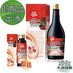 【大漢酵素】即期品-納麴精蔬果