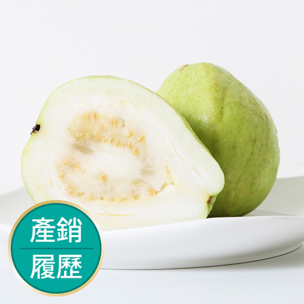 【果物配】珍珠芭樂.產銷履歷(3kg)