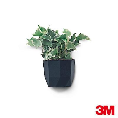 3M 無痕Lifestyle系列-小型置物盒(黑)