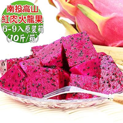 【愛蜜果】南投高山紅肉火龍果6-9入原裝箱 (約10斤/箱)