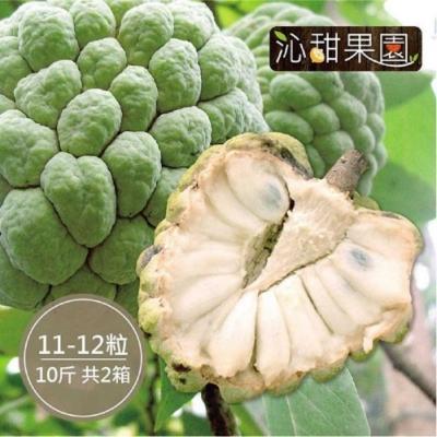 沁甜果園SSN‧台東大目釋迦(11-12顆裝/10台斤)(共2箱)
