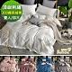 Betrise雙/大均價 純色系列 頂級300織精梳長絨棉素色刺繡被套床包組