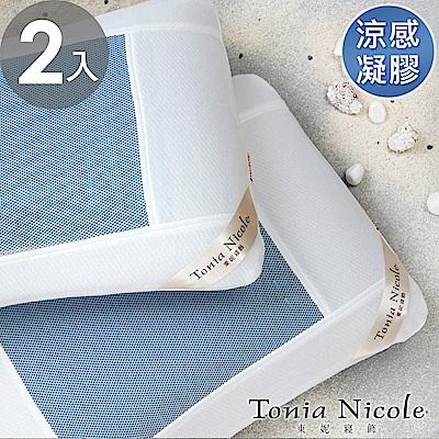 Tonia Nicole東妮寢飾 涼夏凝膠枕-2入組