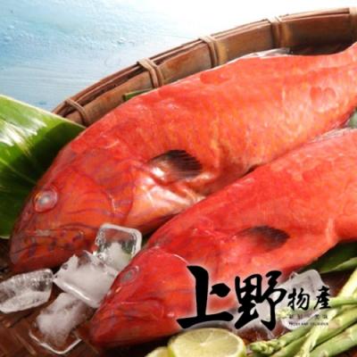 【上野物產】菲律賓燕尾紅條 x2隻(450g土10%/隻)