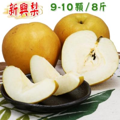 愛蜜果 卓蘭新興梨9-10顆箱裝(約8斤/盒)水梨 梨子