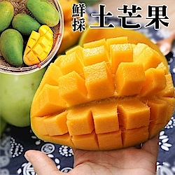 【天天果園】鮮採特大顆土芒果10斤(約35-42顆)