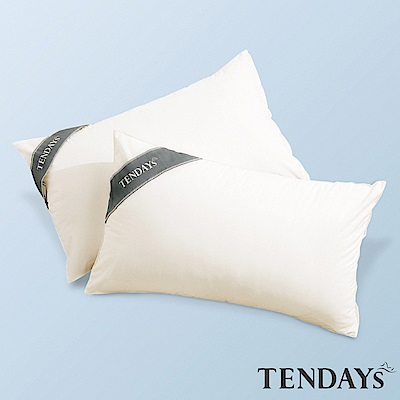 TENDAYS 健康防蹣枕套 單入