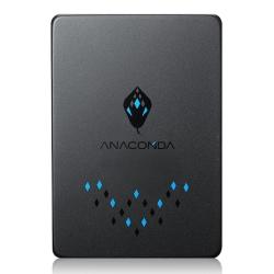 (十入組) ANACOMDA巨蟒 TS 960GB 固態硬碟