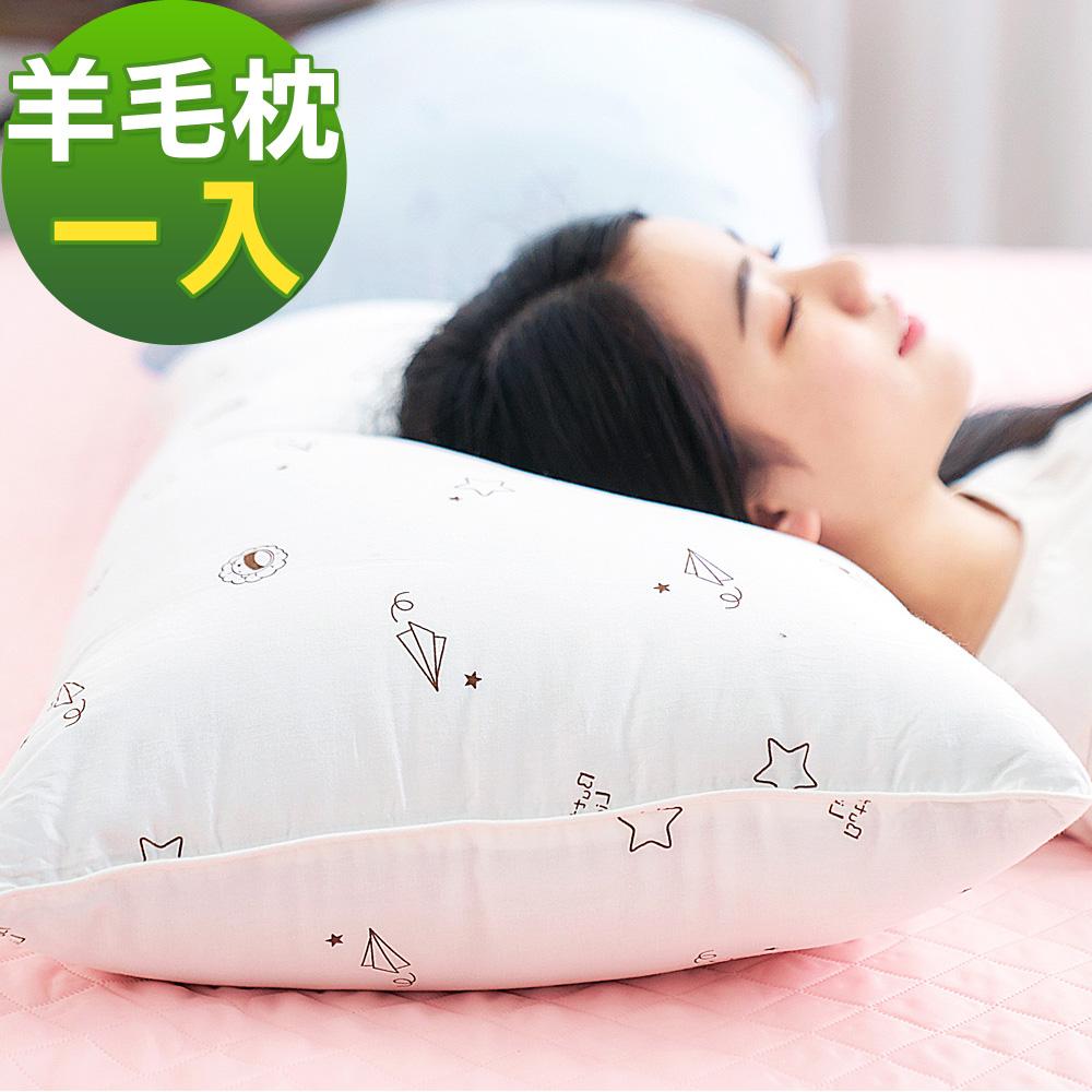 奶油獅 星空飛行-台灣製造-美國抗菌純棉表布澳洲天然羊毛竹炭枕-米(一入)