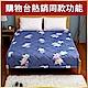 卓瑩 遠紅外線非動力式治療床墊(未滅菌) product thumbnail 1