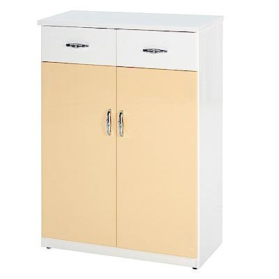 綠活居 阿爾斯環保2.8尺塑鋼二門二抽鞋櫃(二色可選)-83x37x112cm免組