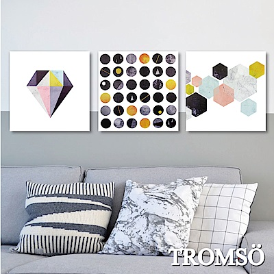 TROMSO 時尚無框畫-北歐異想
