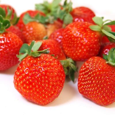 愛上水果 日本空運草莓禮盒*2組(2小盒/500g/約16-20顆/組)(春節禮盒)