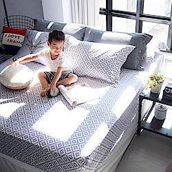 OLIVIA Oliver 標準雙人床包歐式枕套組 300織萊賽爾TENCEL 台灣製
