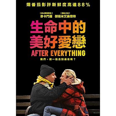 生命中的美好愛戀 DVD