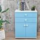 Birdie南亞塑鋼-防水2.1尺二抽二門塑鋼收納櫃/窗邊置物櫃/組合櫃(白色+粉藍色)-63x36.5x84cm product thumbnail 1