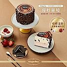 Haagen Dazs哈根達斯 莓好秘境冰淇淋蛋糕-草莓優格x淇淋巧酥(3.5吋)