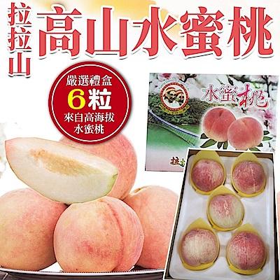 【天天果園】拉拉山水蜜桃(每盒2.8斤) x6顆