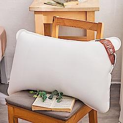 戀家小舖 / 枕頭  4D透氣水洗抑菌枕  超透氣彈性網布  台灣製