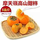【天天果園】摩天嶺高山甜柿5斤(每顆約220g)