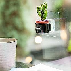 My Garden療癒植物容器 壁貼式/1吋盆栽架*3入-DY521