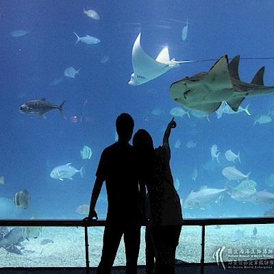 屏東國立海洋生物博物館 全票門票(1張)