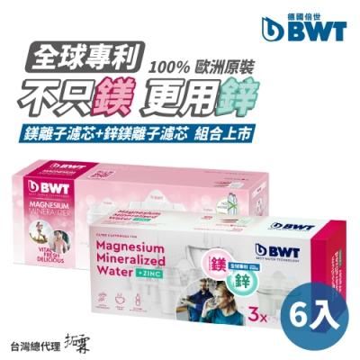 [獨家組合]BWT德國倍世 Mg2+鎂離子&Mg2+Zn鋅鎂離子8週長效濾芯-綜合6入組