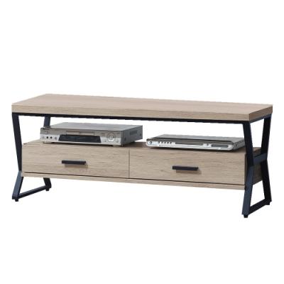 綠活居 亞迪卡現代風4尺木紋二抽電視櫃/視聽櫃-120x40x48cm免組