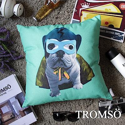 TROMSO 品味英倫棉麻抱枕-閃電郎法鬥