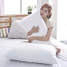 BUHO布歐 黃金級長效抗菌機能枕(1入)