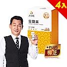 【人可和】 SNQ國家認證金薑黃-樟芝添加x4瓶(30粒/瓶)-先清再補活力瞬現欠睡對策
