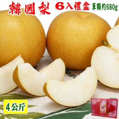 愛蜜果 韓國新高梨特大6入禮盒(約4公斤/盒)