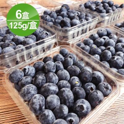 愛上水果 智利空運藍莓6盒禮盒裝*1組(約125g/盒)(春節禮盒)